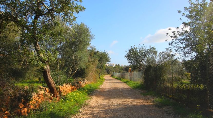 Plot_Approved_to_Build_Luxury_Villa_in_Vale_Formoso_Area_Almancil_More_in_Golden_Triangle_Algarve_Portugal (5)